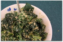 Kale Recipes and Benefits to Make You Feel Good