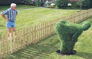 If I was a gardener, it would go like this