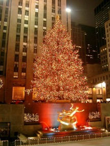 <div><strong>How many lights illuminate this year's Rockefeller Center Christmas tree?</strong></div>