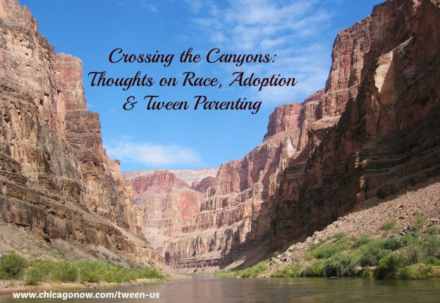 Crossing the Canyons: A guest post for National Adoption Month