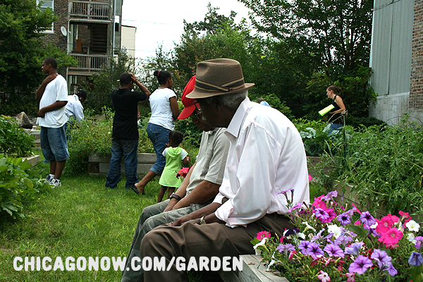 Chicago Community Gardeners.png