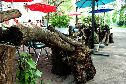 Patio garden fence made from tree trunks and limbs in Chicago.png