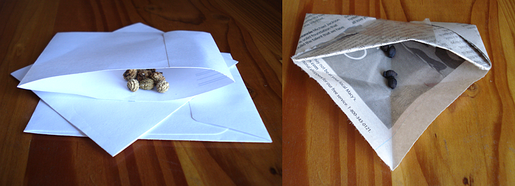 Homemade paper seed envelopes.png
