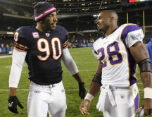 Bears-Vikings: the match-up