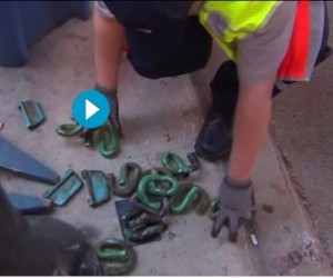 Rail fasteners litter the ground after Tuesday's Orange Line derailment. (Photo from WGN-9 News video)
