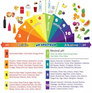 My New Love Affair With Vegetables... Discovering An Alkaline Body