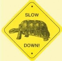 Slow Down So I Know It's Real