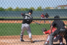 Spring Training Week Two Stock Report