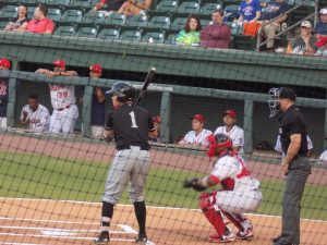 Outfielder Alex Call at the plate for the Intimidators (photo provided to FutureSox by Tiffany Wintz)