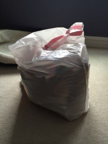 40 Bags in 40 Days: Day 1