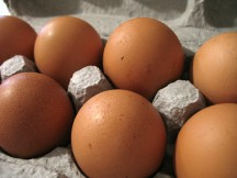Do you know why some eggs are brown?