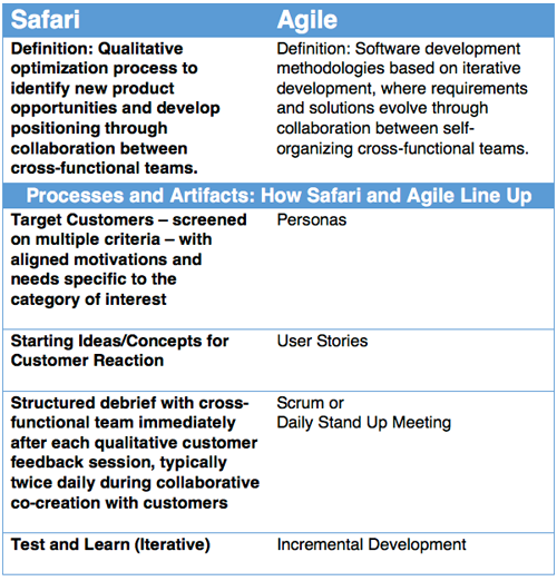 Making Cross-Functional Teams Work: Going on a Customer Safari with an Agile Team