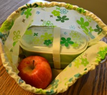 Bento lunch boxes: healthy eating options for kids