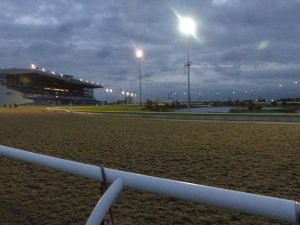 Daybreak at Woodbine. (Photo: Nicolle Neulist)