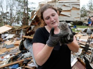 Rescue workers continue to pull animals from flattened home in Oklahoma.