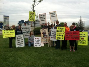 The Puppy Mill Project has been staging protest at Furry Babies for several years.