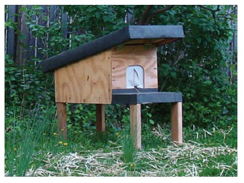 How to make a cat shelter for outdoor cats