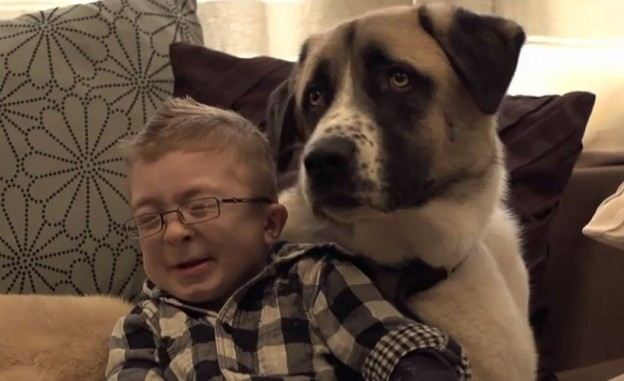 Soul mates: A young boy and his dog show true meaning of love