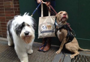 Rudie and Fifty have been making public appearances to support the Six Legs Foundation.
