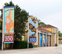Free Admission for Kids at the Brookfield Zoo tomorrow