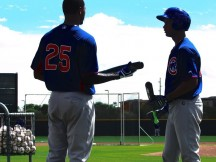 Cubs Prospect Statistical Review - The Hitters